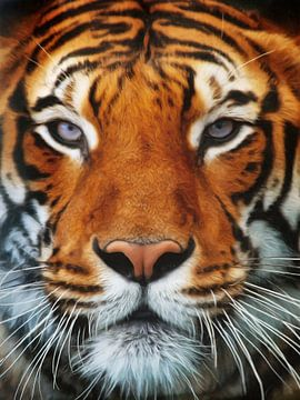 Tiger Portrait van Angela Dölling