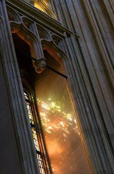 Sint Jan Den Bosch, verstrooid licht van Jacq Christiaan
