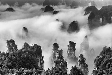 Landschap met zandsteen pilaren in China in zwart wit van