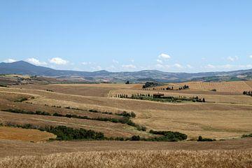 Toscaans landschap van Sander Miedema