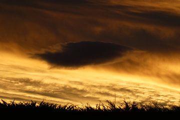 Nieuw Zeeland, Wolkenpartij van Anita Tromp