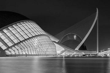 Valencia - City of Arts and Sciences van Bas Bakema