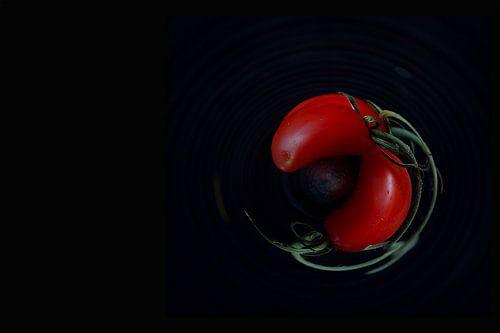 Roterende tomaten van Mirjam van Vooren