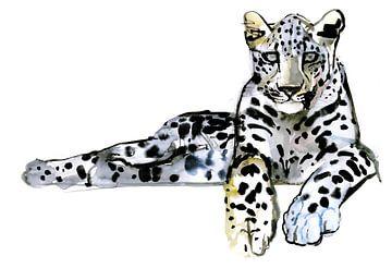 Arabische luipaard van Mark Adlington