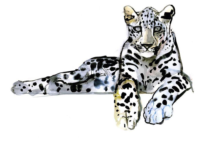 Arabischer Leopard von Mark Adlington