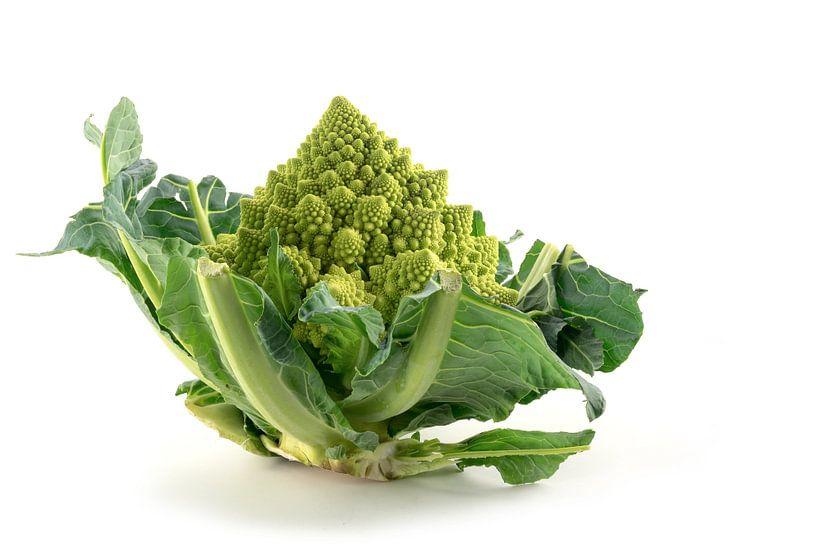 Romanesco broccoli of Romeinse bloemkool geïsoleerd op een witte achtergrond, groene groente, biolog van Maren Winter