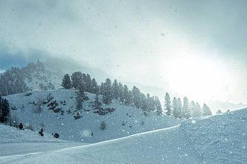 Glinsterende sneeuw von Edzard Boonen