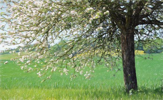 l'arbre van Yvonne Blokland