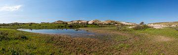 Paysage de dunes néerlandais sur Yannick uit den Boogaard