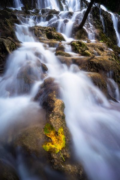 Herfst in Krka national park