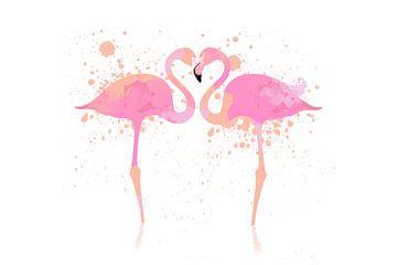 Flamingos van Felix Brönnimann