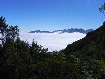 Wolken partij boven in de bergen van Madeira van Ingrid Van Maurik