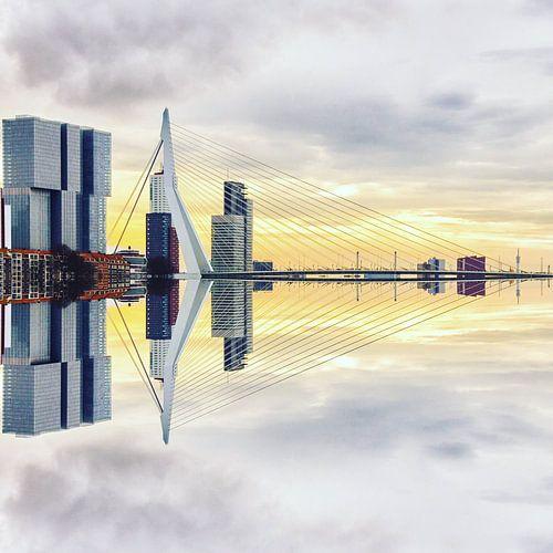 Rotterdam <> madrettoR van