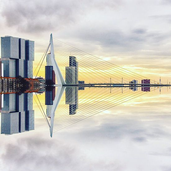 Rotterdam <> madrettoR