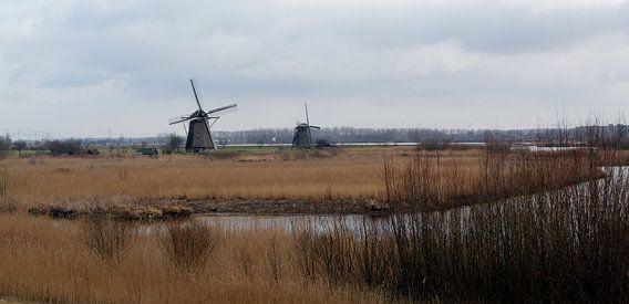 Molenduo in Kinderdijk