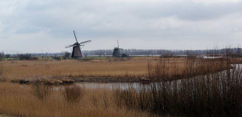 Molenduo in Kinderdijk van Yvonne Blokland