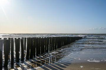 Strand von Zoutelande von Lieselotte Stienstra