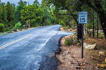 15 miles road von Ton Kool