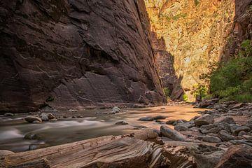 Narrows Zion park Amerika van Robert Dibbits