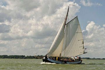 Windkracht 5 van Wil van der Velde