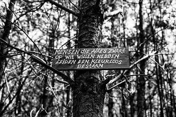 Een kleurloos bestaan (zwart-wit) von Evert Jan Luchies