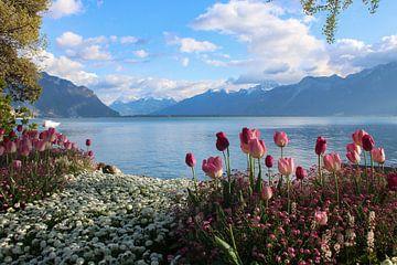 Swiss Riviera van Ilse de Deugd