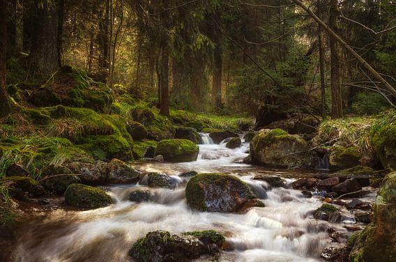Bodefälle in de Harz