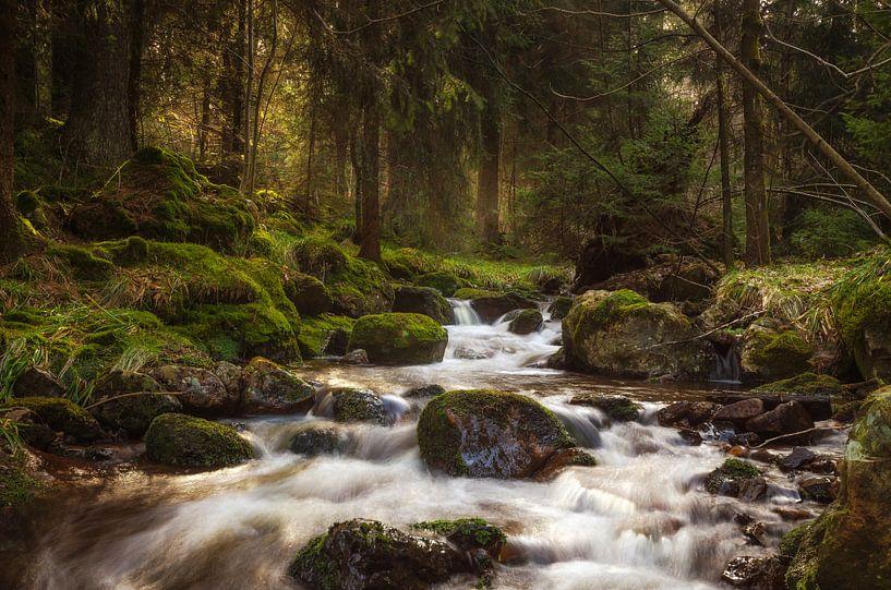 Bodefälle in de Harz van Steffen Gierok