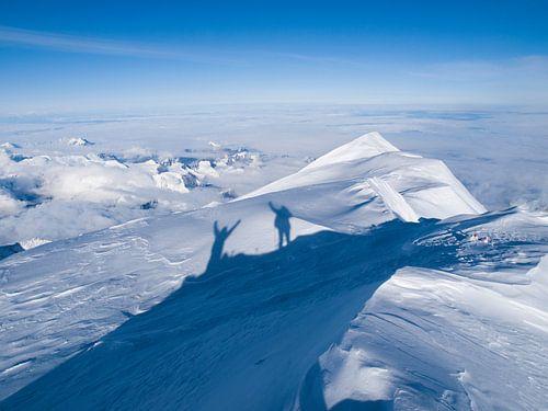 De top van Denali in Alaska van