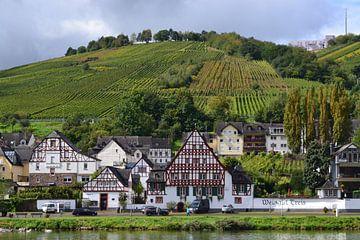 Mosel, Ansicht der Weinfelder von Bernard van Zwol