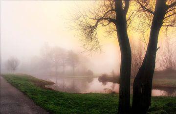 Mist van Iwan Goulooze