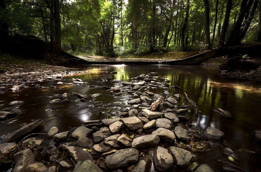 Natuur op zijn best van Richard Driessen