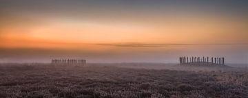 Grafheuvels in de mist van Boris Van Berkel