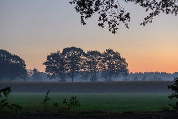 ochtend over het platteland van Tania Perneel