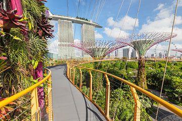 Skyway, Supertrees, Gardens by the Bay, Singapur von Markus Lange