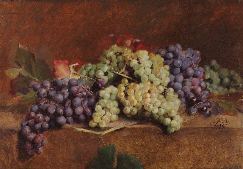 António José da Costa~Wijndruiven van finemasterpiece