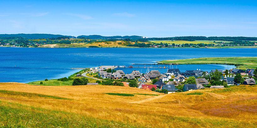 Am Bodden auf der Insel Rügen von Reiner Würz / RWFotoArt