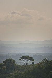 Herfst in Toscane, Italië van