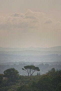 Herfst in Toscane, Italië von Paul Teixeira