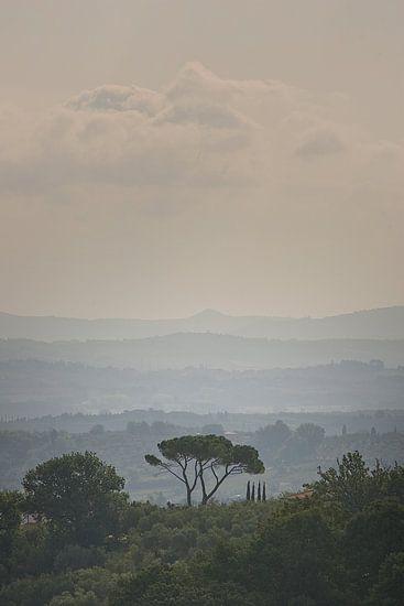 Herfst in Toscane, Italië van Paul Teixeira