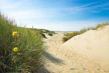Duinen en strand von Michel van Kooten