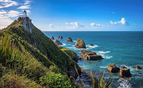 Vuurtoren op Taiaroa Head, Otago Peninsula, Nieuw Zeeland