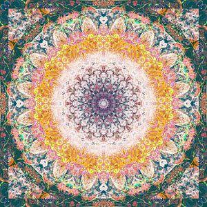 Fine Nature Mandala