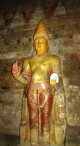 Buddha in Dambulla, Sri Lanka