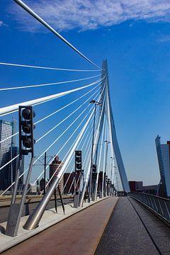 Erasmus Brücke Rotterdam von ticus media