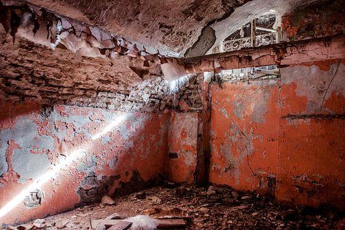 Red Cellar van
