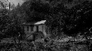 verlassene Farm auf Lefkas in schwarz-weiß