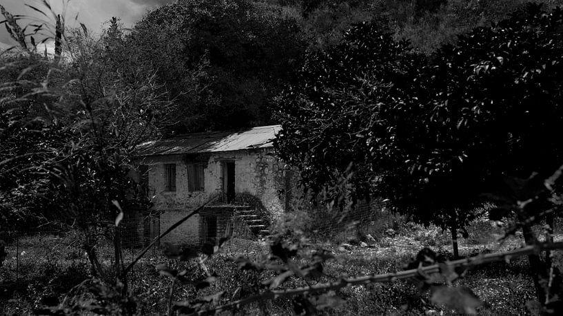 verlassene Farm auf Lefkas in schwarz-weiß von ticus media