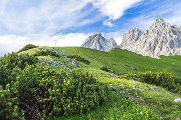 Berglandschap in de Alpen van Coen Weesjes