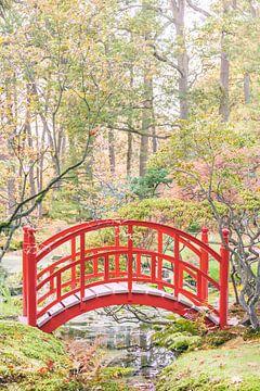 De Japanse Tuin van Martin Bergsma